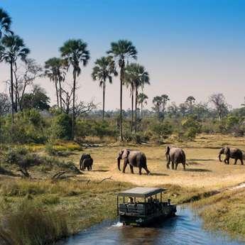 Новый Год ЮАР – Зимбабве – Ботсвана. Заезд 03.01.2019