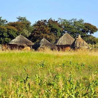 Дикая и беззащитная Африка