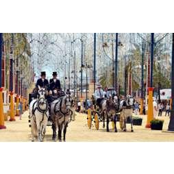 Загадочная Андалусия-южная корона Испании (с посещением Альгамбры)